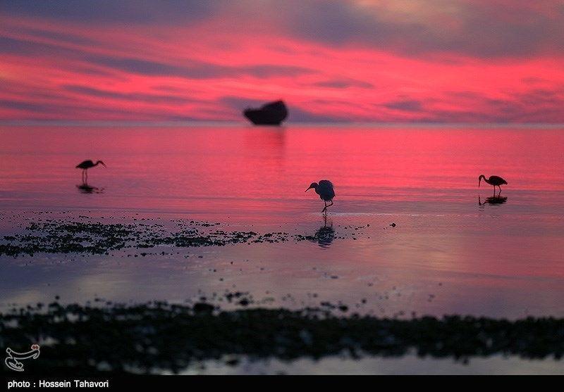 Kolbe Hoor-Iran kish island-2