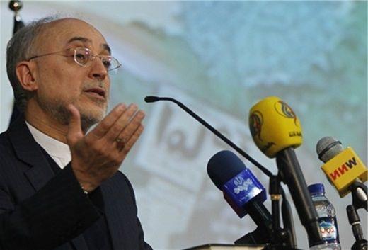 Atomic Energy Organization of Iran (AEOI) Head Ali Akbar Salehi