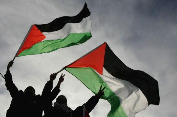 palestine flags