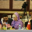 A 17th General Assembly of the Asia-Pacific Parliamentarian Conference on Environment and Development
