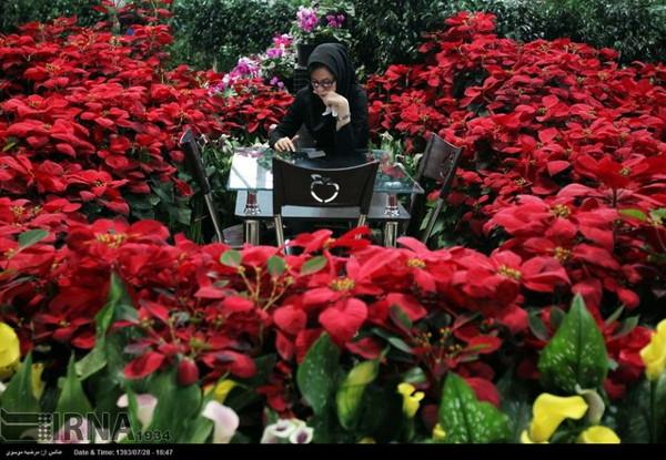 Tehran Fllower show