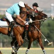 Iran-Polo match