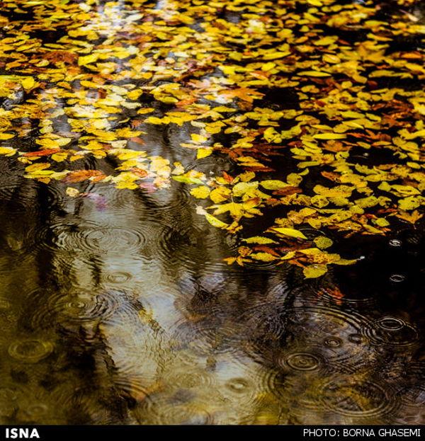 Iran-Tehran-Autumn