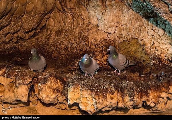 Iran's Saholan Cave