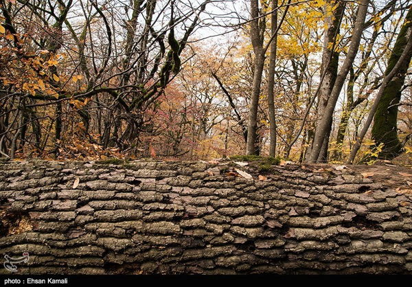 Autumn in Iran's North Khorasan