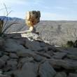 Iran-Chehreh Rock