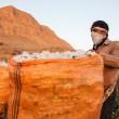 Cotton picking season in Iran