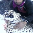 Persian leopard hunter