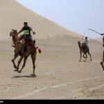 Camel Racing (15)