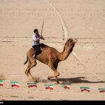 Camel Racing (5)