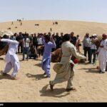 Camel Racing (9)