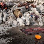 Carpet washing47