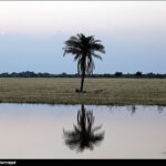 Khuzestan Province, Land of Oil and More