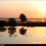 Flood-Hit Khuzestan (4)