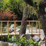 Flower Garden_IMG_4345