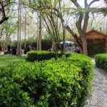 Flower Garden_IMG_4450