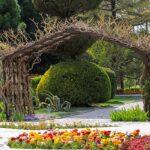 Flower Garden_IMG_4550