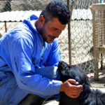 Hayat Animal Sanctuary_7976