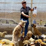 Hayat Animal Sanctuary_8040