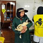 Hayat Animal Sanctuary_8114