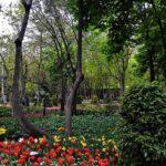 Iranian Garden77