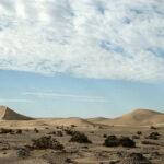 Loot Desert_070248