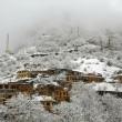 Masuleh Winter1122