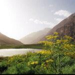 Mount Gol – Dena Region
