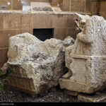 Palmyra-4926980