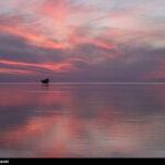 Persian Gulf12