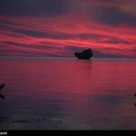 Persian Gulf13