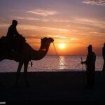 Persian Gulf7