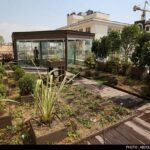 Roof-Garden-11