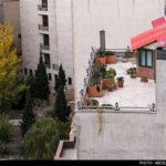 Roof-Garden-21