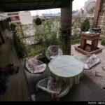 Roof-Garden-23