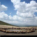 Spring in Ardabil2