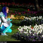 Tulips Festival (12)