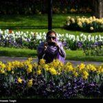 Tulips Festival (5)