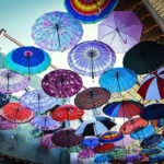 Umbrella alley -shiraz543