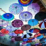 Umbrella alley -shiraz543
