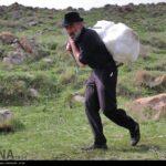 Varf chal-4954598