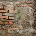 Wall of Gorgan-20-