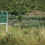 Wall of Gorgan-48-