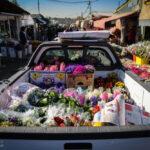 flower garden_66361