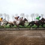horse races_7260-[50-]