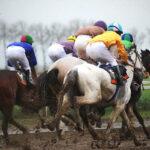 horse races_7261-[50-]