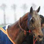 horse races_7312-[50-]