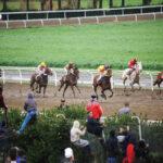 horse races_7324-[50-]
