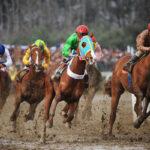 horse races_7401-[50-]