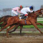 horse races_7408-[50-]